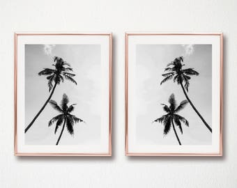 set of 2 palm trees