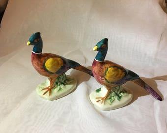 A Pair of China Pheasants