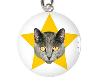 Harry Cat Yellow Star Sterling Silver Meniscus Charm Pendant