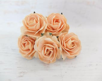 5 35mm light peach mulberry roses - peach paper flowers (Style 1)