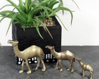 Brass Camel Miniatures, Vintage Camel Figurines, Bohemian Decor