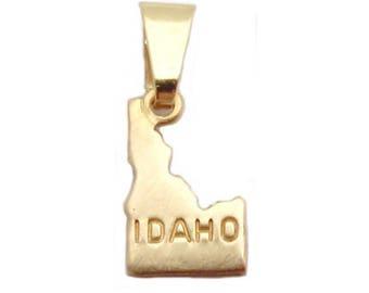"Idaho State Necklace.  Raw Brass.  18"" Gold Chain. Tiny."