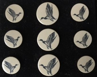 Set of 9 Unused Barlow Scrimshaw Duck Buttons In Original Box Duck Button