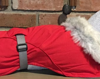 "Italian Greyhound Red Ripstop Dog w/Grey fleece & faux fur collar Size 16"" (00058)Small Dog, Min Pin, Chinese Crested, Min Poodle, Chihuahua"