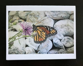 Monarch Butterfly Watercolor image on Note card on a Flower amongst the rocks on Mackinaw Island,the Straits of Mackinaw by Janet Dosenberry