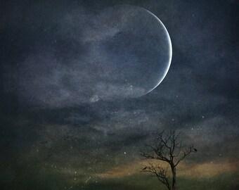 new moon photo, capricorn surreal landscape bare tree photo, home decor night sky winter astrology blue cosmic dark moody haunting spiritual