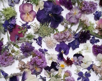 Bulk Dried Flowers, Wedding Confetti, Table Decorations, Flower Girl, Aisle Decorations, Biodegradable, Guest Book Table, 84 Cups Confetti
