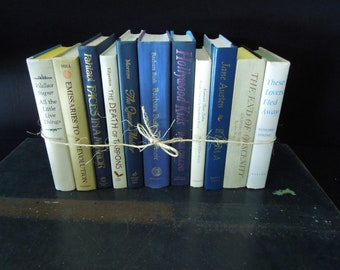 White & Blue Books by Color - Interior Design Home Staging - Instant Library - Book stack - Bookshelf Decor