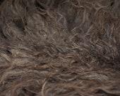 """Raw Fleece Shetland Wool """"Callie"""""""