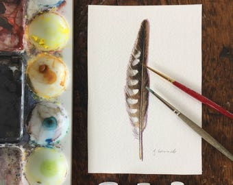 Original watercolour Painting - raptor feather
