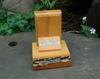 232 year old Mt. Vernon White Ash Wood Bookend ~ Bookend Made From A White Ash Tree Planted At MT. Vernon in 1785 by George Washington