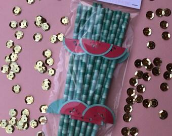 Set of 12 Watermelon Straws