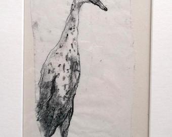 "Indian Runner duck -""Keek""- Original Monoprint - OOAK"