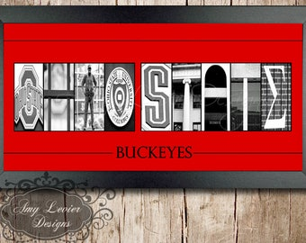 The Ohio State Buckeyes Alphabet Photography Framed  - 10 X 20