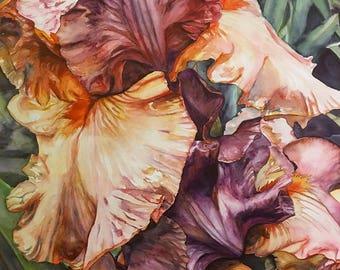 Heirloom Irises Original Watercolor Painting - Realistic Flowers, Realistic Watercolor, Botanical Painting, Realistic Painting, Floral
