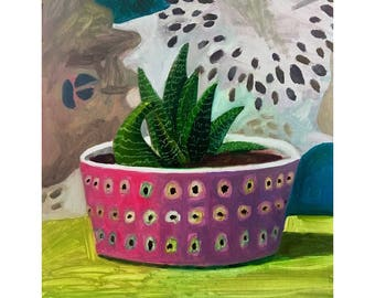 Succulent in Pink Bowl