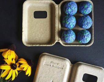 Organic Mammoth Grey Stripe Sunflower Earth Day Seed Bomb-Garden Gift-Non-GMO