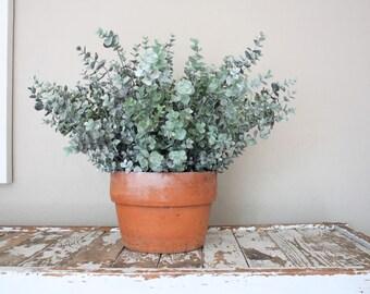 Faux Eucalyptus Bush // Gray