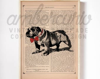 Red Bow Tie English Bulldog Black and White Animal Lover Inspired Art Print on an Unframed Upcycled Bookpage