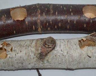 Small Pet Natural  Chew- Play Log- 5 Logs