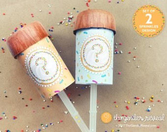 Sprinkles Confetti Push-Pops for Gender Reveal Parties - Set of 2