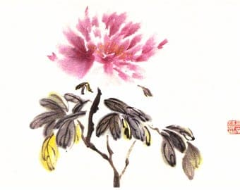 Chinese Zen Painting - Pink Peony in watercolor