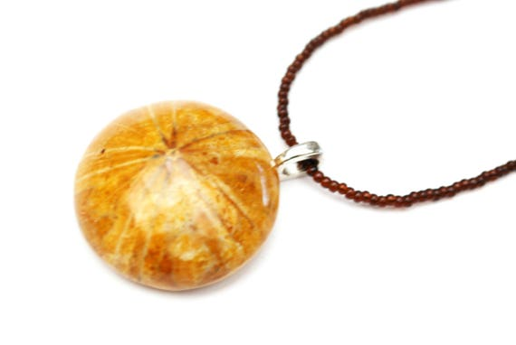 fossil sand dollar necklace -  echinoderm pendant - Brownd domed round Shell-  handmade bead necklace