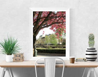 Floral Photography, Paris Photography, Flowers in Paris, Cherry Blossoms on the Seine, Floral Print Art, French Home Decor, Paris Wall Art