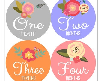 Sweet Flower Baby Monthly Stickers
