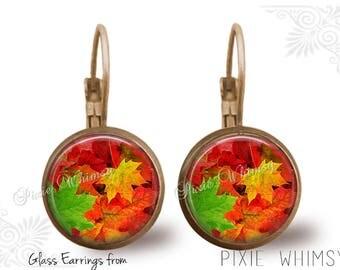 LEAF Earrings, Autumn Fall leaves Dangle Drop or Leverback Earrings Glass Dome Photo Art Nature Jewelry Thanksgiving Earrings