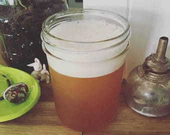 KOMBUCHA SCOBY + INSTRUCTIONS (Learn to brew your own probiotic rich fermented tea)
