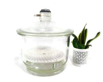 Scientific Lab Glass * Desiccator * Terrarium * Pyrex Glass