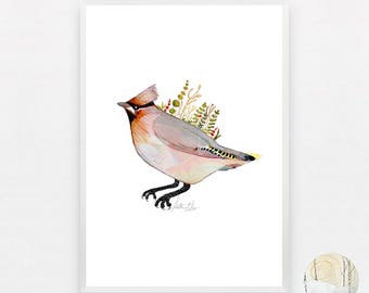 Waxwing A3 Print