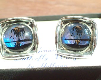 Genuine Butterfly Wing Cufflinks by Hoffman On Original Card