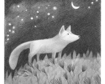 Foxlight - fox print - fox illustration - fox art - 5x5 print