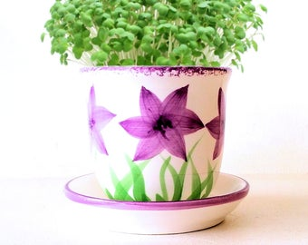 DIY Microgreens Garden Kit in Purple Floral Farmhouse Style Planter - Complete Growing Kit includes Planter, Organic Seeds and Soil Mix