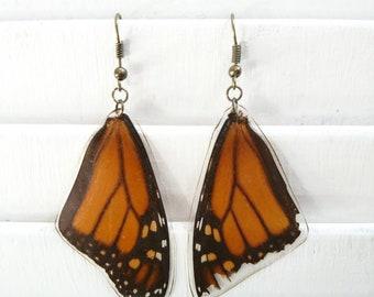 Monarch butterfly wing earrings. Nickle free metal.