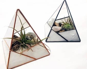 Air Plant Terrarium / Rocky Mountain Prism / Stained Glass Planter