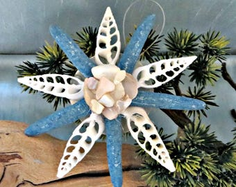 Blue star fish and Sliced Sea shell ornament_beach ornaments (6)