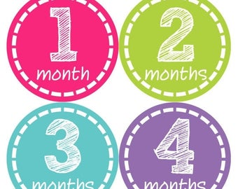 Monthly Baby Stickers Baby Month Stickers Baby Girl Month Stickers Monthly Photo Stickers Monthly Milestone Stickers 148
