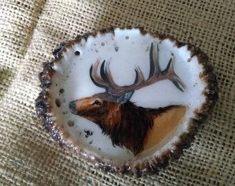 "Bull Elk belt buckle, over 3-1/4"" wide original painting with natural background, on genuine Elk antler rosette, great gift idea"