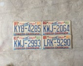 Custom Order - NC plates Behind Wood Silhouette