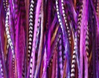 """4""""-7"""" Genuine Purple, Violet, Brown & Grizzly 5 Feathers"""