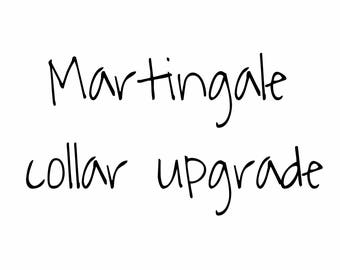Upgrade to a Martingale Collar