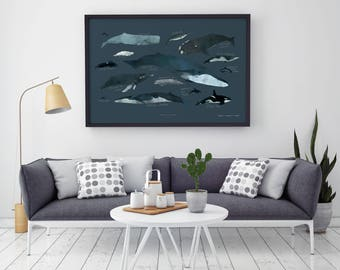 """Whales Chart of the Saint-Lawrence river – Big Art Print – Multiple sizes available  8"""" x 10"""" / 12"""" x 18"""" / 24"""" x 36"""""""