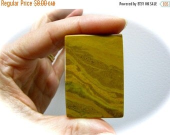 ONSALE Autumn Jasper Pendant Focal Bead 46mm x 32mm x 5mm 20g