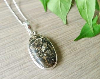 Jasper Necklace, Large Stone, Turtella Jasper, Oval Stone, Stone Necklace, Brown, Jasper Jewelry, Large Jasper, Turtella, Turtle Stone