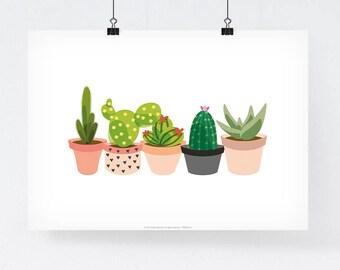 Poster Cactus Succulent planter