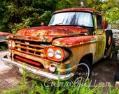 1959 -1960 Green Rusty Dodge Truck in the Woods Photograph