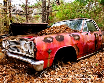 1964 Chevy El Camino in the Woods Photograph